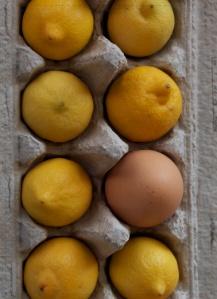 hatch-pcard-eggimage